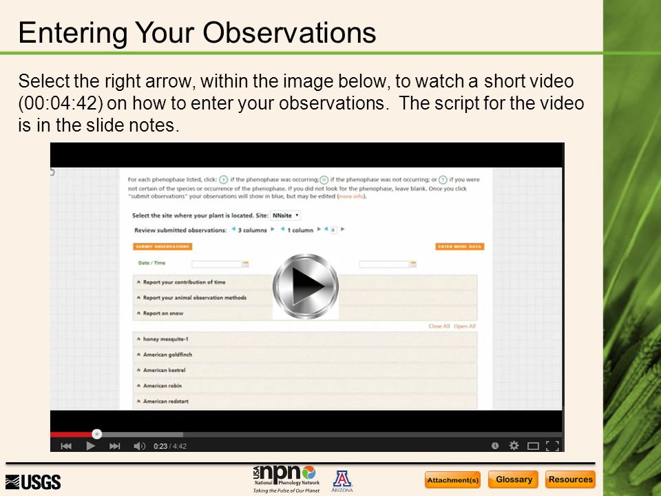 Entering Your Observations Select the right arrow, within the image below, to watch a short video (00:04:42) on how to enter your observations. The sc