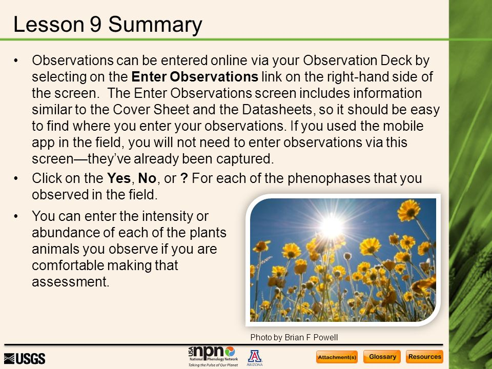 Lesson 9 Summary Observations can be entered online via your Observation Deck by selecting on the Enter Observations link on the right-hand side of th