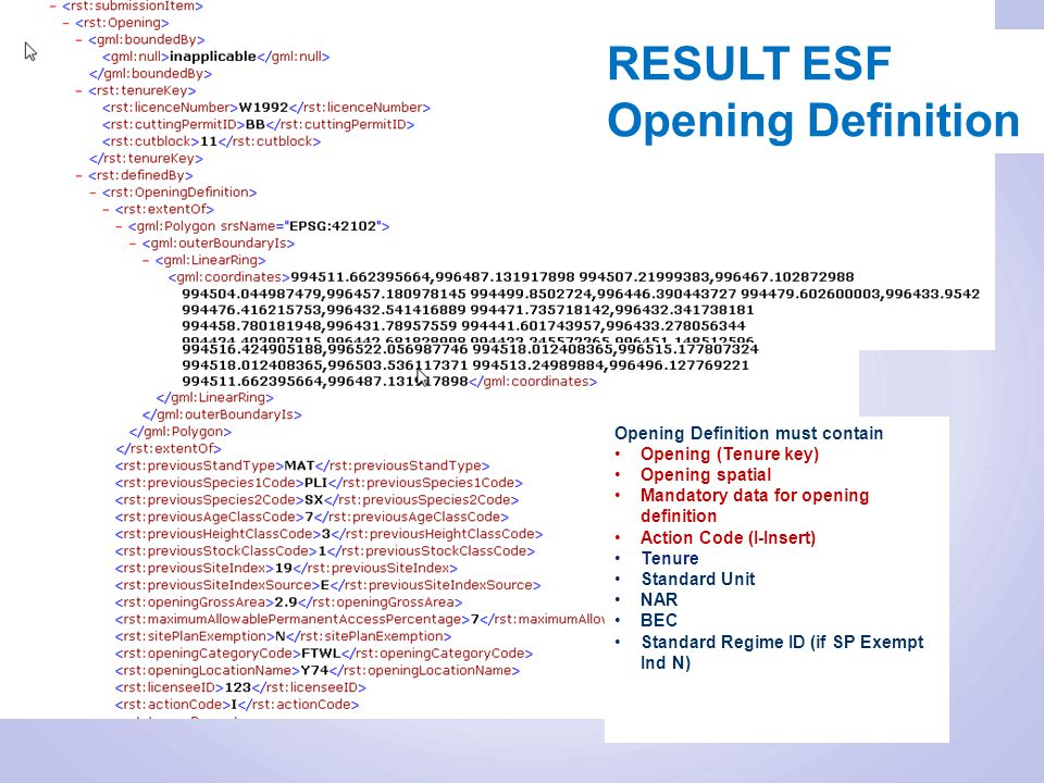 Opening Definition must contain Opening (Tenure key) Opening spatial Mandatory data for opening definition Action Code (I-Insert) Tenure Standard Unit