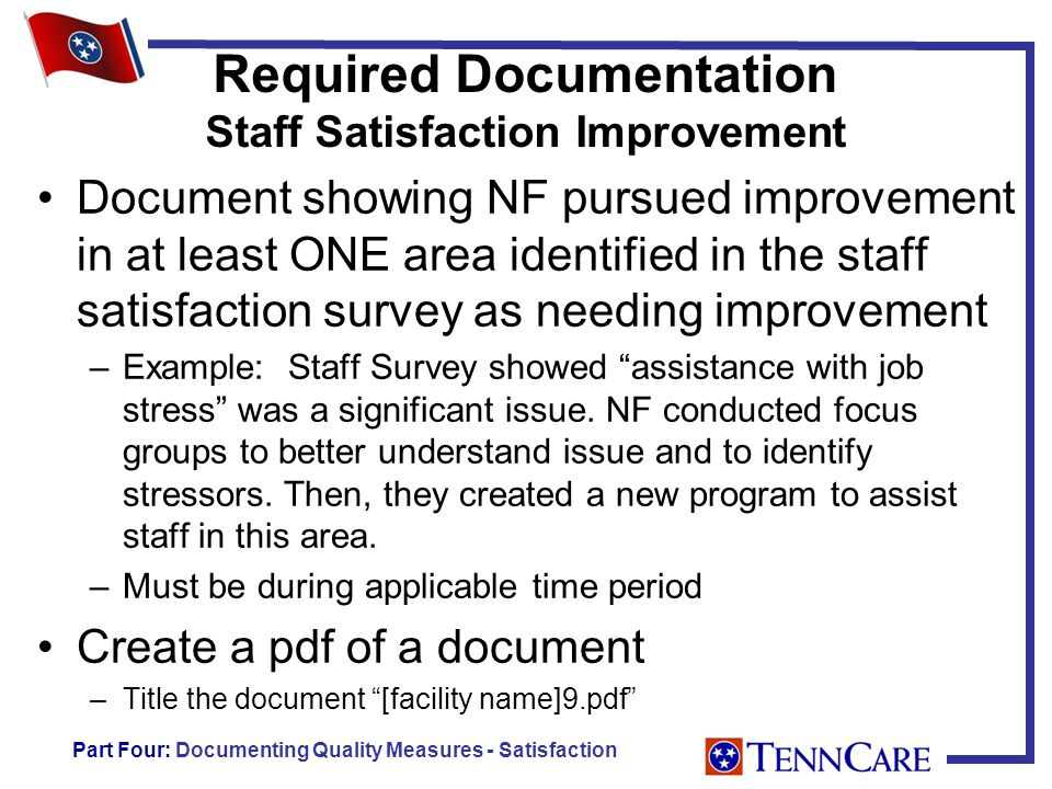 Required Documentation Staff Satisfaction Improvement Document showing NF pursued improvement in at least ONE area identified in the staff satisfaction survey as needing improvement –Example: Staff Survey showed assistance with job stress was a significant issue.