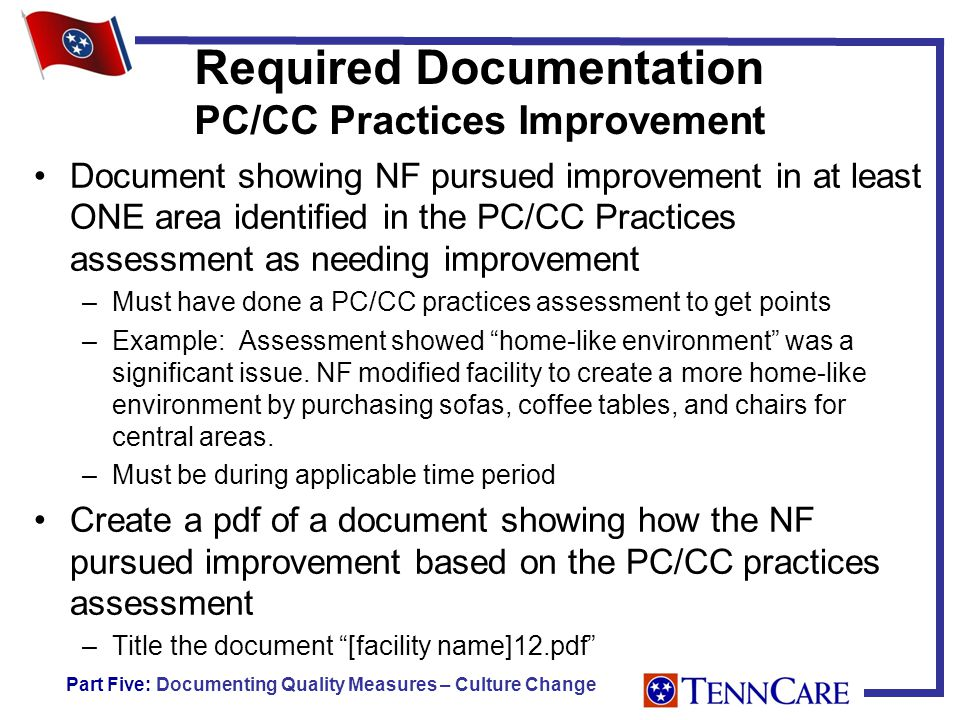 Required Documentation PC/CC Practices Improvement Document showing NF pursued improvement in at least ONE area identified in the PC/CC Practices assessment as needing improvement –Must have done a PC/CC practices assessment to get points –Example: Assessment showed home-like environment was a significant issue.