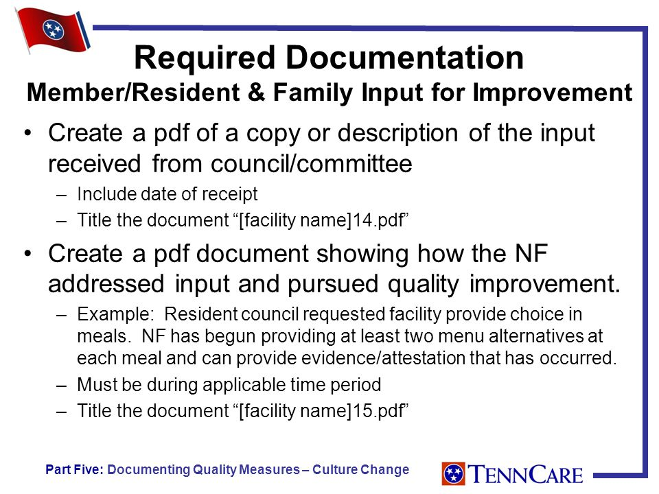 Required Documentation Member/Resident & Family Input for Improvement Create a pdf of a copy or description of the input received from council/committee –Include date of receipt –Title the document [facility name]14.pdf Create a pdf document showing how the NF addressed input and pursued quality improvement.