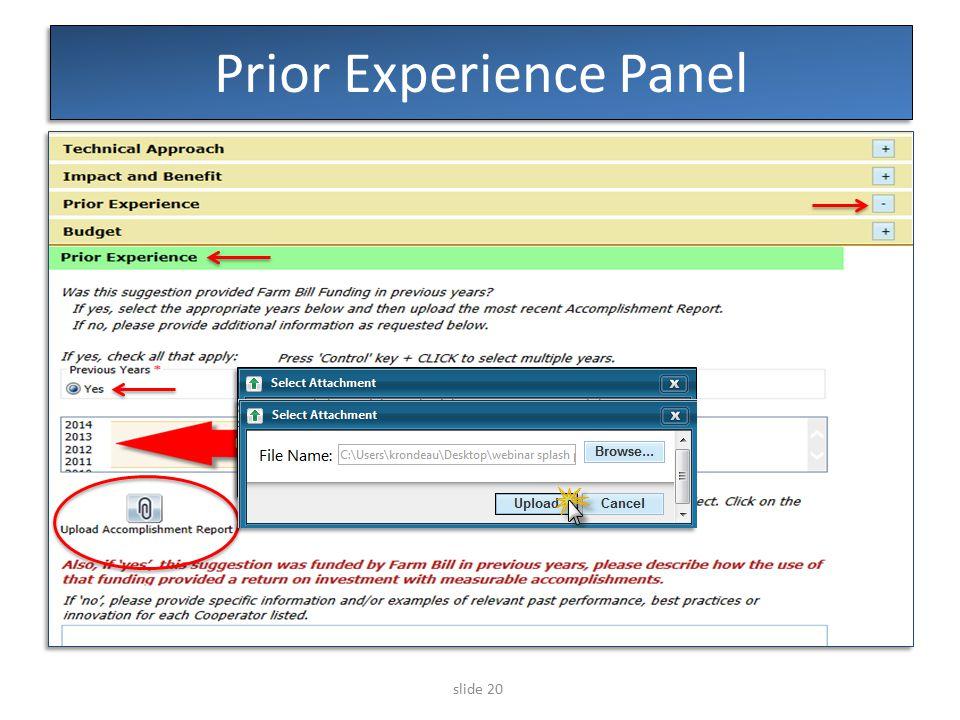 slide 20 Prior Experience Panel