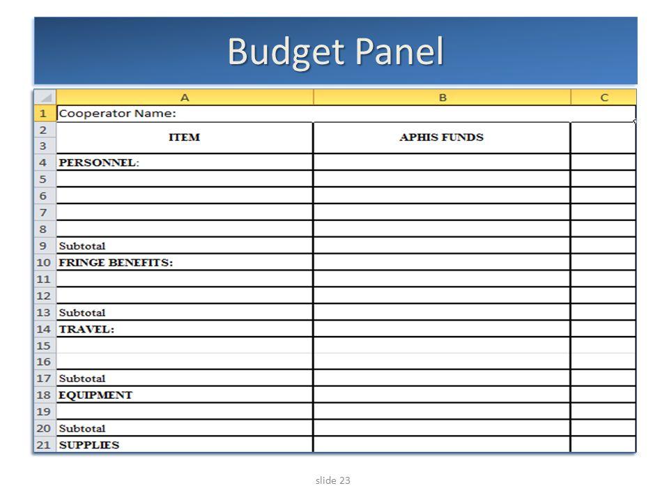 slide 23 Budget Panel