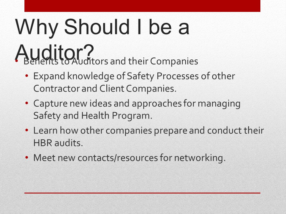 Why Should I be a Auditor.
