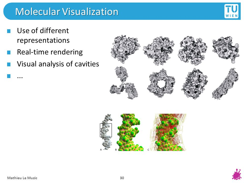 Molecular Visualization Use of different representations Real-time rendering Visual analysis of cavities... Mathieu Le Muzic 30