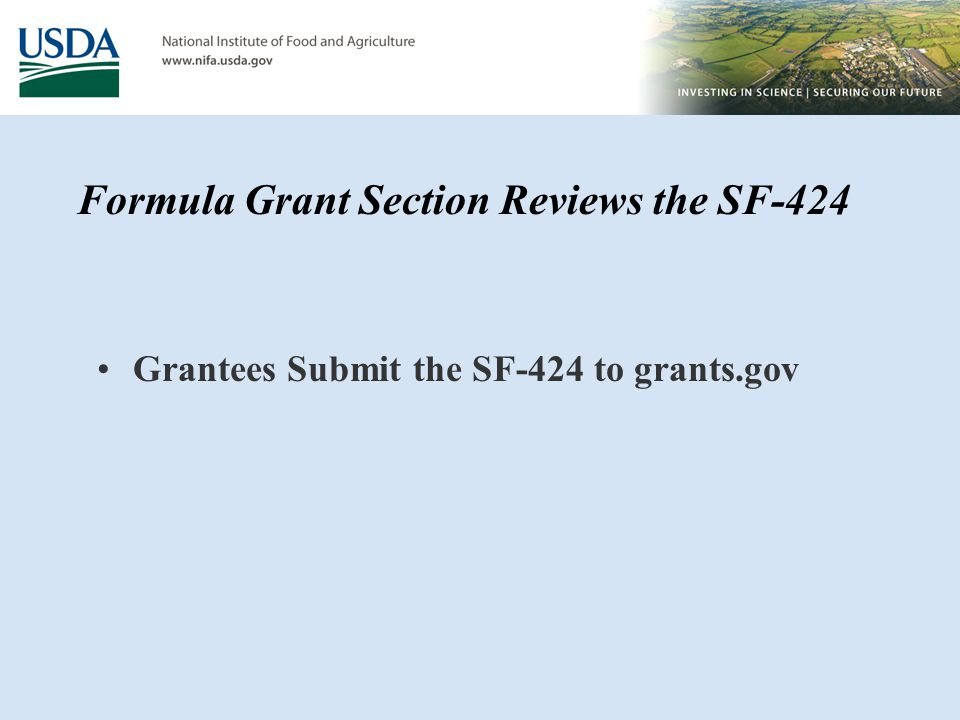 Grantees Submit the SF-424 to grants.gov Formula Grant Section Reviews the SF-424