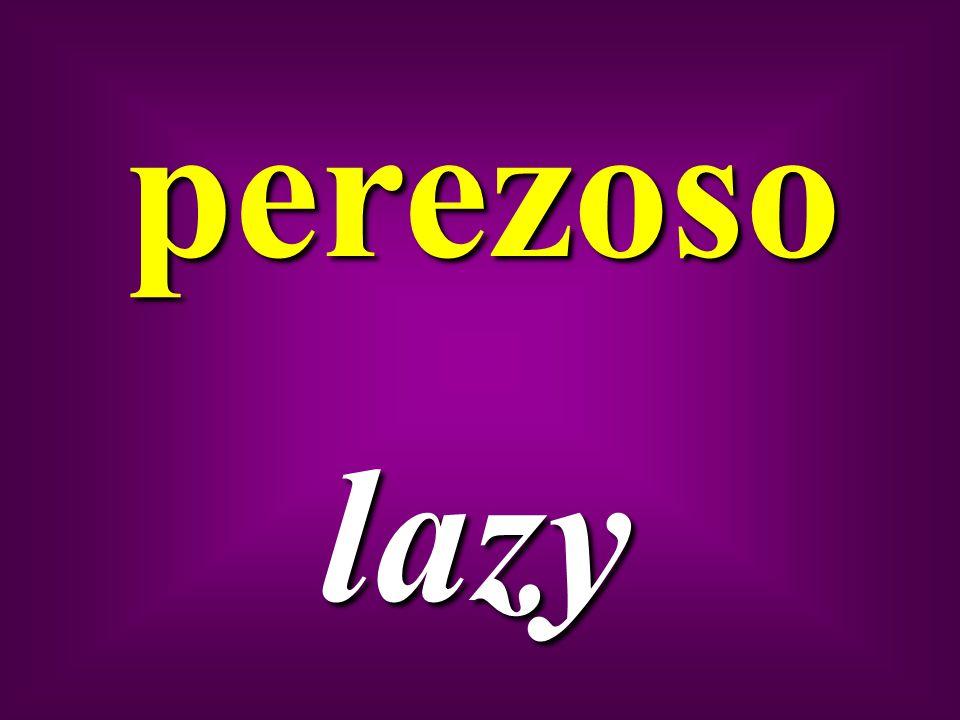 perezoso lazy