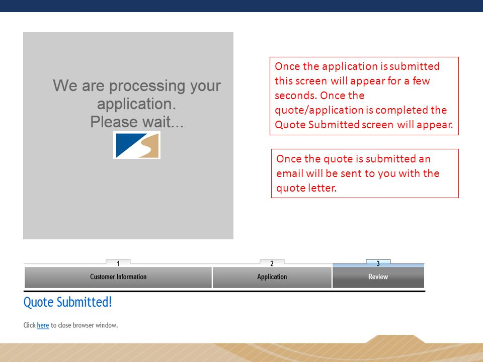 Once the application is submitted this screen will appear for a few seconds.