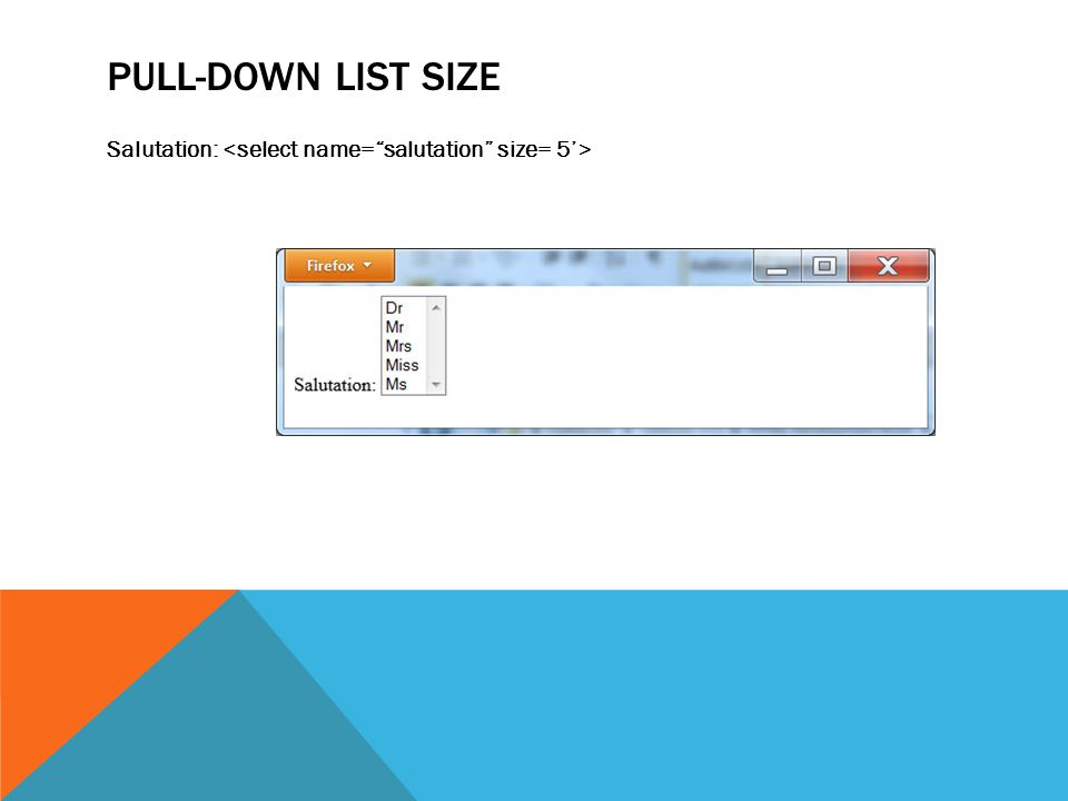 PULL-DOWN LIST SIZE Salutation: