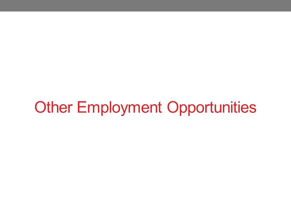 Other Employment Opportunities