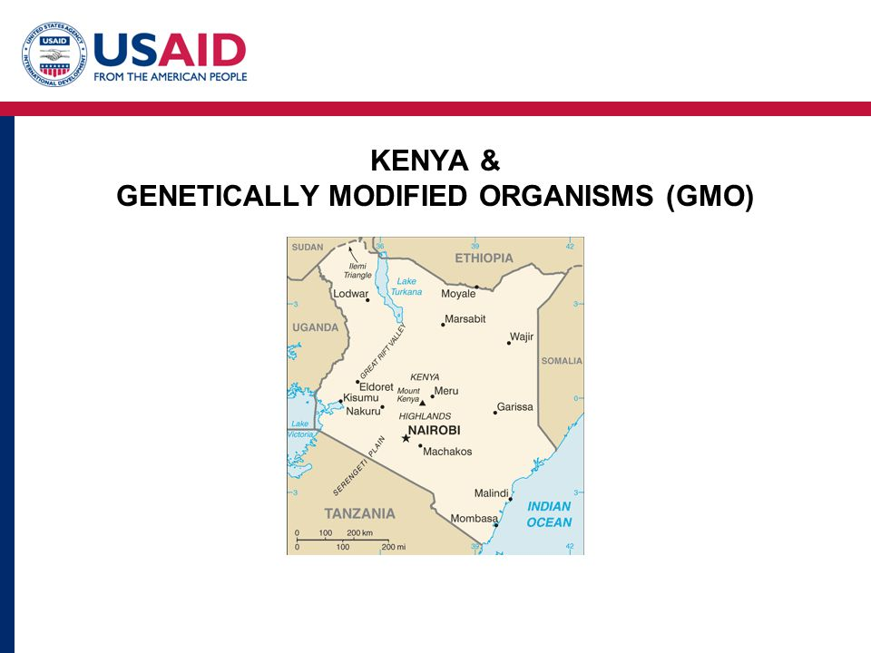 KENYA & GENETICALLY MODIFIED ORGANISMS (GMO)