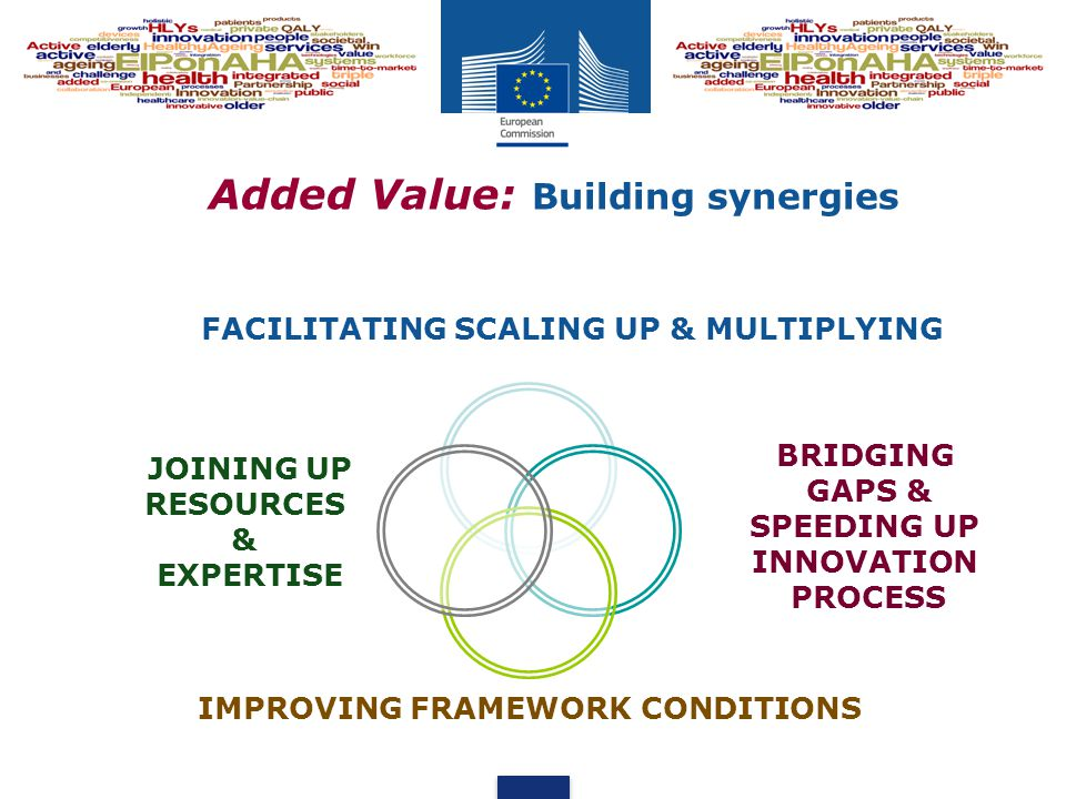 Added Value: Building synergies FACILITATING SCALING UP & MULTIPLYING BRIDGING GAPS & SPEEDING UP INNOVATION PROCESS IMPROVING FRAMEWORK CONDITIONS JOINING UP RESOURCES & EXPERTISE