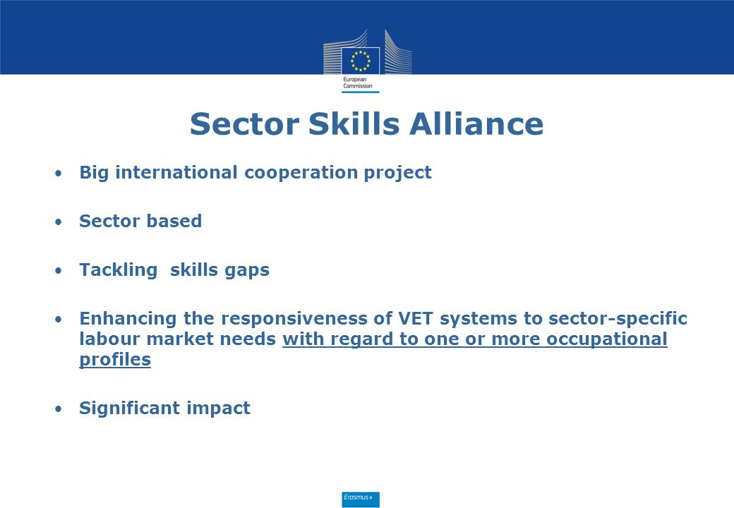 Sector Skills Alliance Big international cooperation project Sector based Tackling skills gaps Enhancing the responsiveness of VET systems to sector-s