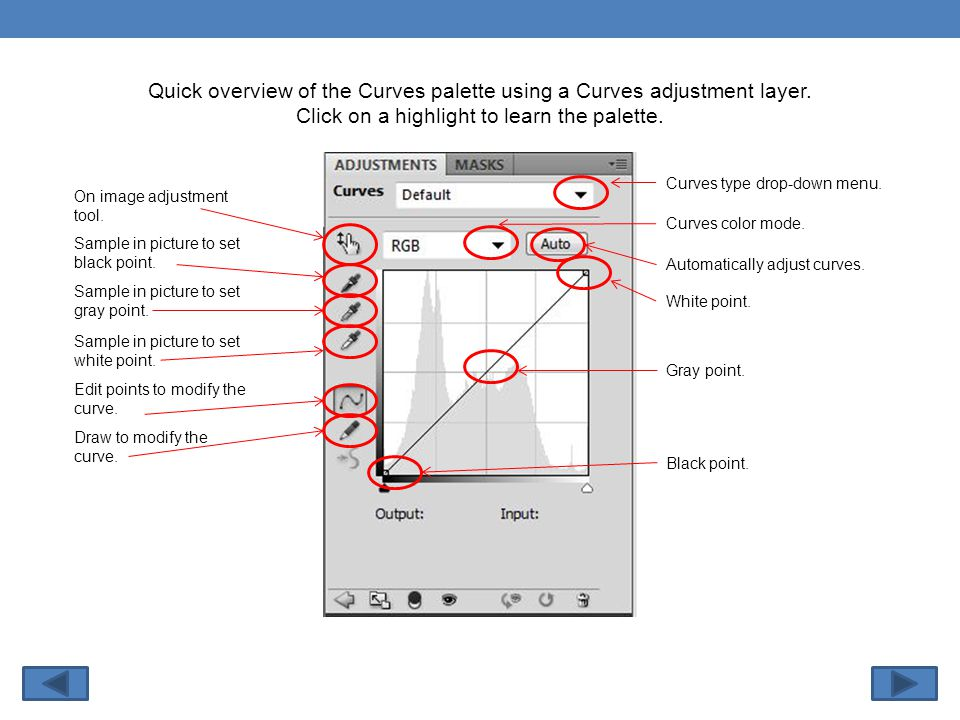 Quick overview of the Curves palette using a Curves adjustment layer.