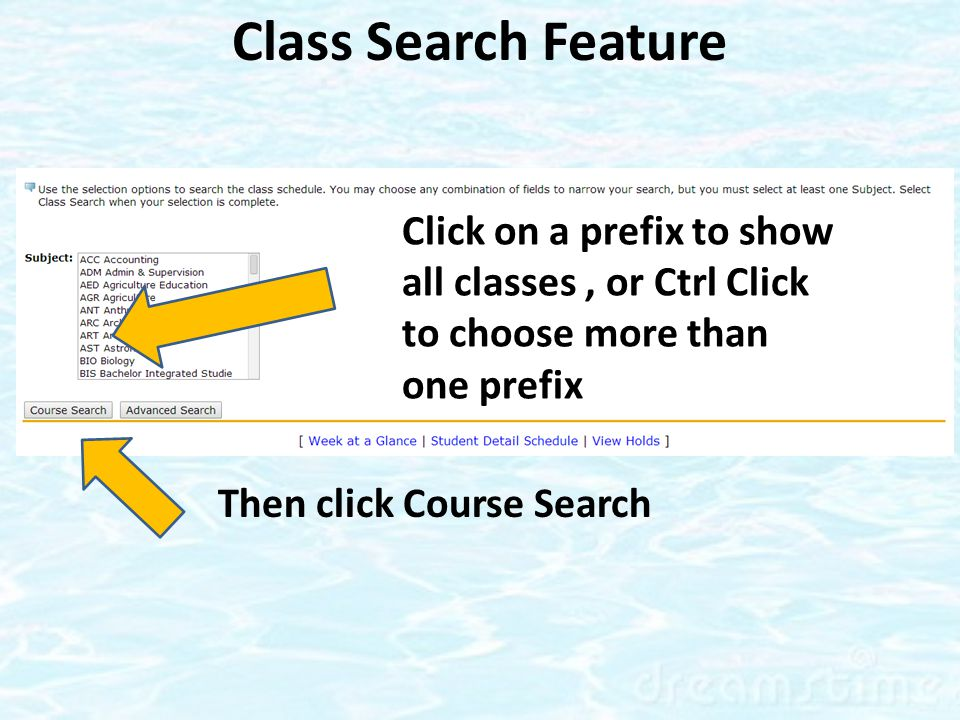Class Search Feature Then click Course Search Click on a prefix to show all classes, or Ctrl Click to choose more than one prefix