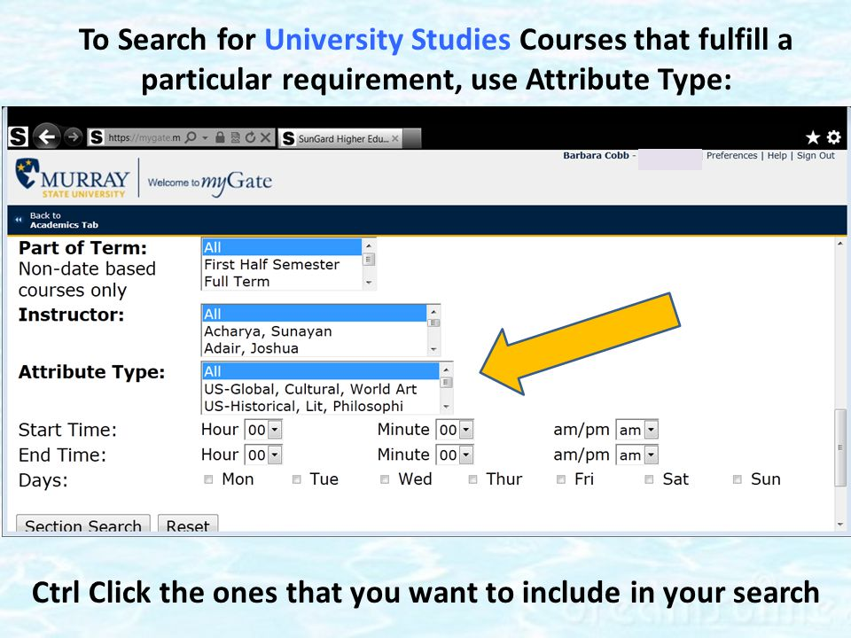 To Search for University Studies Courses that fulfill a particular requirement, use Attribute Type: Ctrl Click the ones that you want to include in your search