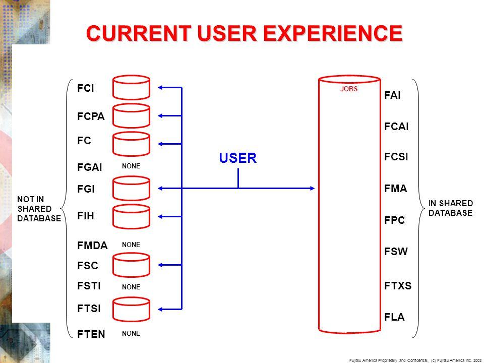 Fujitsu America Proprietary and Confidential, (c) Fujitsu America Inc. 2003 CURRENT USER EXPERIENCE USER FC FIH FSC FTSI FTEN NONE FGAI NONE FGI FCI F