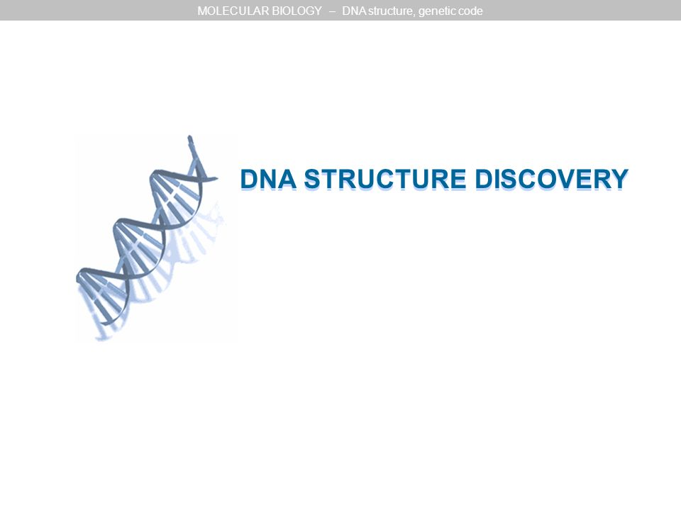 DNA STRUCTURE DISCOVERY MOLECULAR BIOLOGY – DNA structure, genetic code
