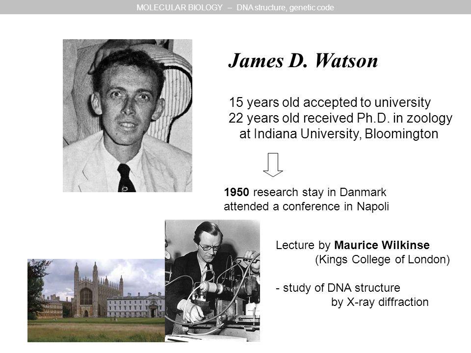 Cavendish Laboratory, Cambridge Watson: study of 3D-structure of myoglobine Francis Crick 33 years old still Ph.D.