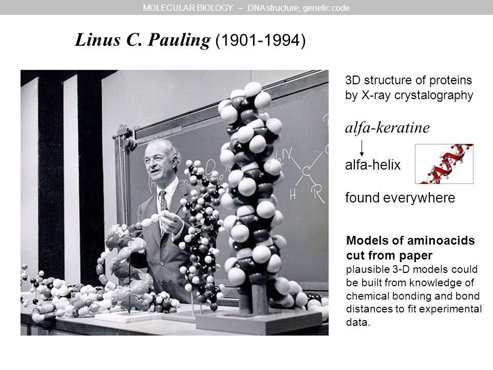 Linus C.