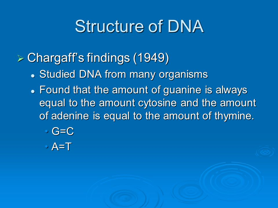 Structure of DNA  Chargaff's findings (1949) Studied DNA from many organisms Studied DNA from many organisms Found that the amount of guanine is alwa