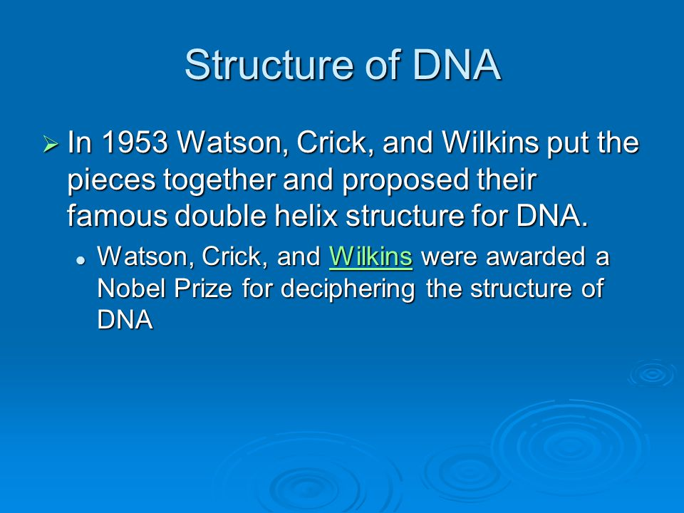 Structure of DNA  In 1953 Watson, Crick, and Wilkins put the pieces together and proposed their famous double helix structure for DNA.