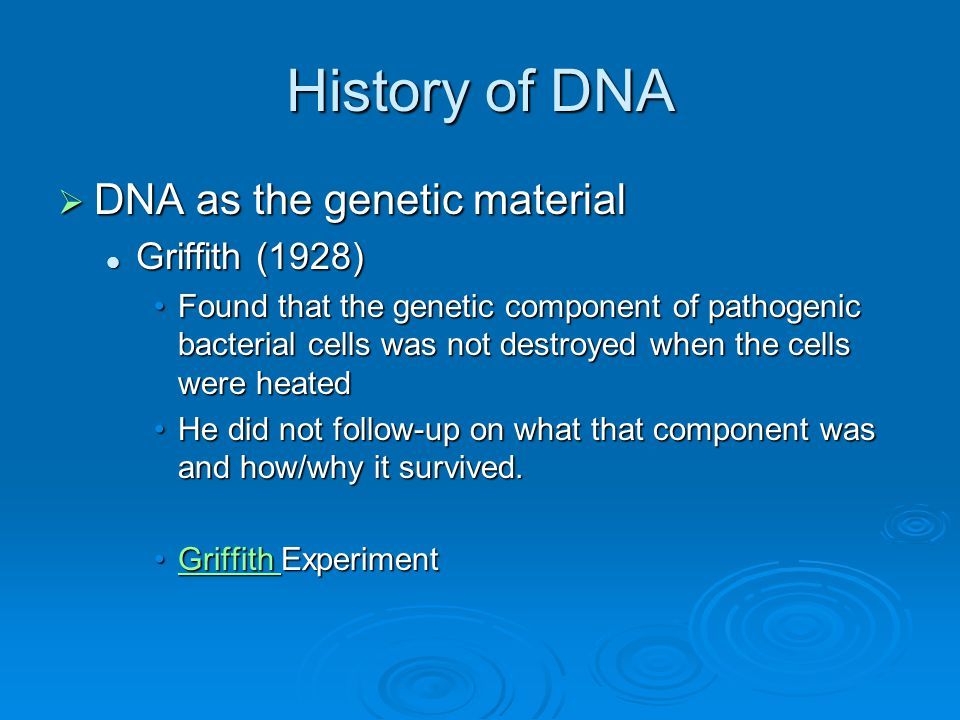 History of DNA  DNA as the genetic material Griffith (1928) Griffith (1928) Found that the genetic component of pathogenic bacterial cells was not destroyed when the cells were heatedFound that the genetic component of pathogenic bacterial cells was not destroyed when the cells were heated He did not follow-up on what that component was and how/why it survived.He did not follow-up on what that component was and how/why it survived.