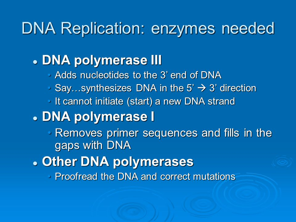 DNA Replication: enzymes needed DNA polymerase III DNA polymerase III Adds nucleotides to the 3' end of DNAAdds nucleotides to the 3' end of DNA Say…synthesizes DNA in the 5'  3' directionSay…synthesizes DNA in the 5'  3' direction It cannot initiate (start) a new DNA strandIt cannot initiate (start) a new DNA strand DNA polymerase I DNA polymerase I Removes primer sequences and fills in the gaps with DNARemoves primer sequences and fills in the gaps with DNA Other DNA polymerases Other DNA polymerases Proofread the DNA and correct mutationsProofread the DNA and correct mutations