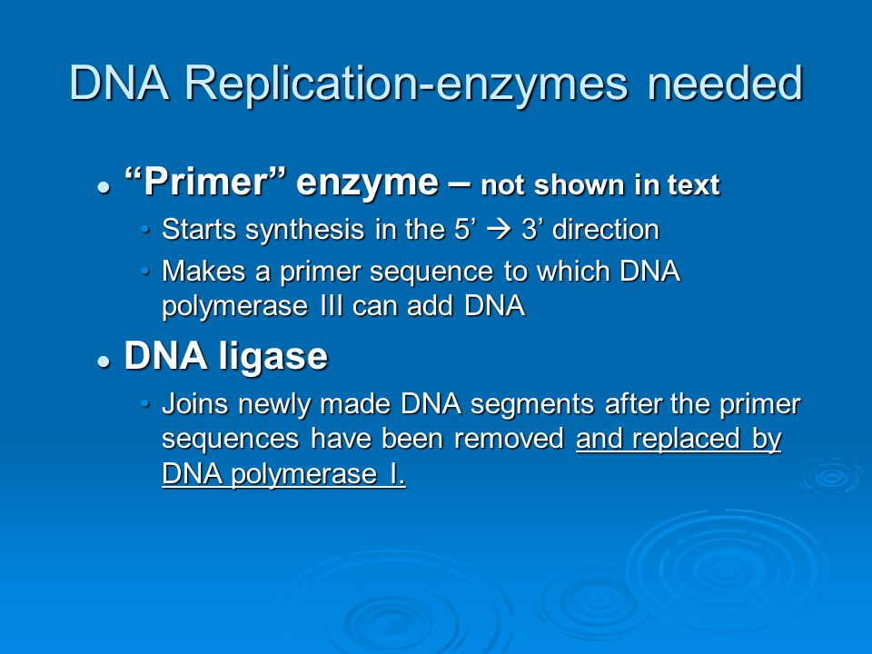 """DNA Replication-enzymes needed """"Primer"""" enzyme – not shown in text """"Primer"""" enzyme – not shown in text Starts synthesis in the 5'  3' directionStarts"""