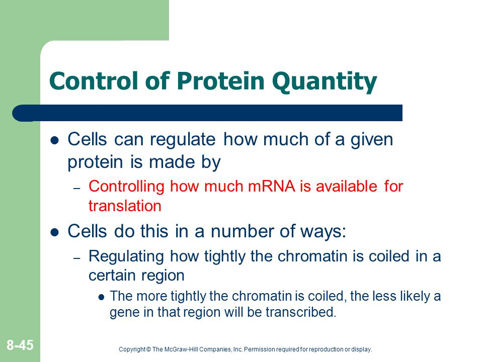 Copyright © The McGraw-Hill Companies, Inc. Permission required for reproduction or display. 8-45 Control of Protein Quantity Cells can regulate how m
