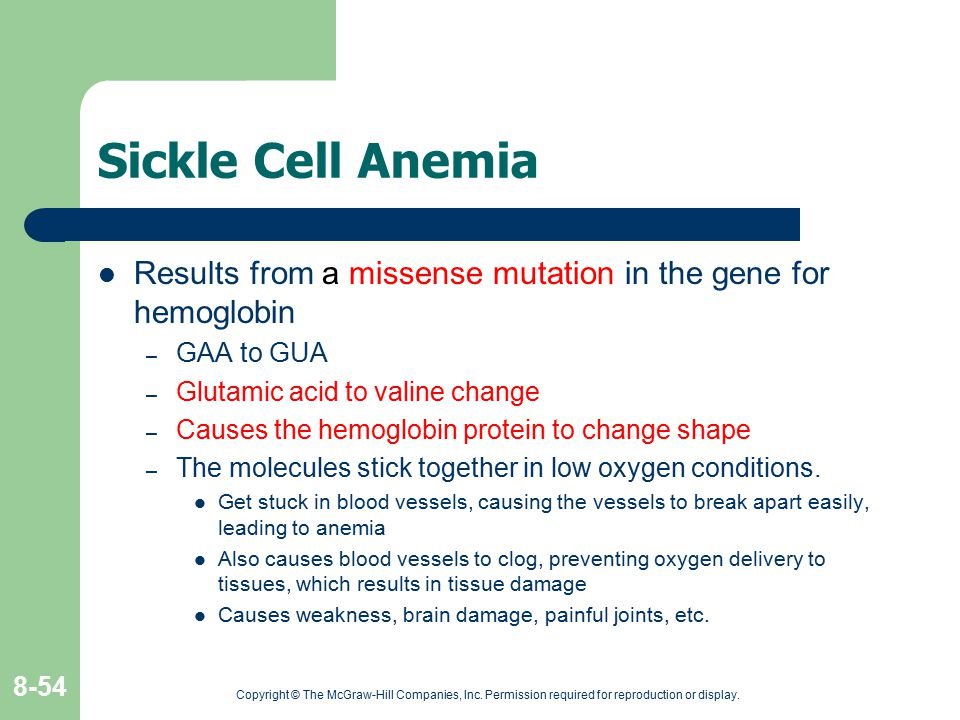 Copyright © The McGraw-Hill Companies, Inc. Permission required for reproduction or display. 8-54 Sickle Cell Anemia Results from a missense mutation