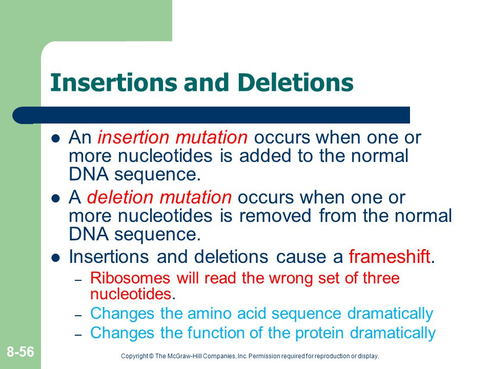 Copyright © The McGraw-Hill Companies, Inc. Permission required for reproduction or display. 8-56 Insertions and Deletions An insertion mutation occur