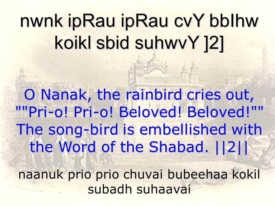 naanuk prio prio chuvai bubeehaa kokil subadh suhaavai nwnk ipRau ipRau cvY bbIhw koikl sbid suhwvY ]2] O Nanak, the rainbird cries out, Pri-o.