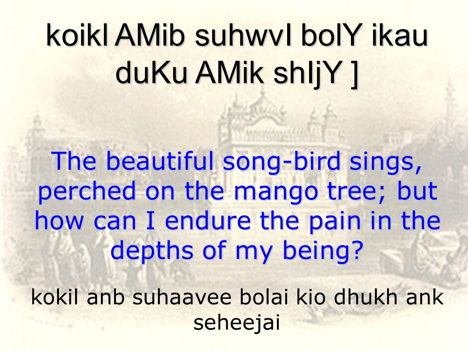 kokil anb suhaavee bolai kio dhukh ank seheejai koikl AMib suhwvI bolY ikau duKu AMik shIjY ] The beautiful song-bird sings, perched on the mango tree; but how can I endure the pain in the depths of my being