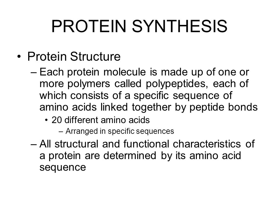 PROTEIN SYNTHESIS Protein Structure –Each protein molecule is made up of one or more polymers called polypeptides, each of which consists of a specific sequence of amino acids linked together by peptide bonds 20 different amino acids –Arranged in specific sequences –All structural and functional characteristics of a protein are determined by its amino acid sequence