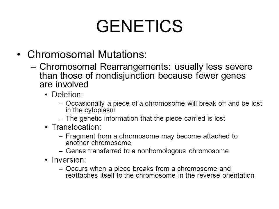 GENETICS Chromosomal Mutations: –Chromosomal Rearrangements: usually less severe than those of nondisjunction because fewer genes are involved Deletion: –Occasionally a piece of a chromosome will break off and be lost in the cytoplasm –The genetic information that the piece carried is lost Translocation: –Fragment from a chromosome may become attached to another chromosome –Genes transferred to a nonhomologous chromosome Inversion: –Occurs when a piece breaks from a chromosome and reattaches itself to the chromosome in the reverse orientation