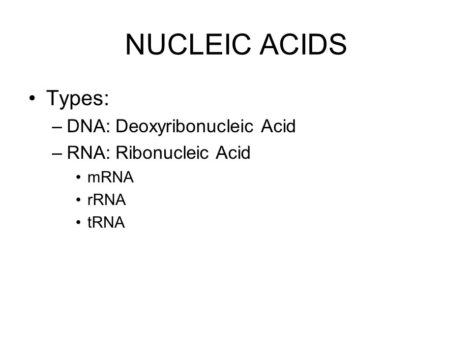 NUCLEIC ACIDS Types: –DNA: Deoxyribonucleic Acid –RNA: Ribonucleic Acid mRNA rRNA tRNA