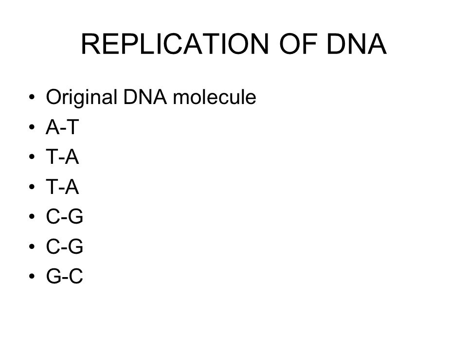 REPLICATION OF DNA Original DNA molecule A-T T-A C-G G-C