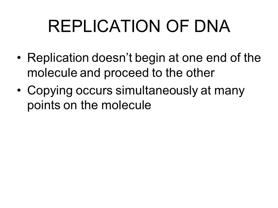 REPLICATION OF DNA Replication doesn't begin at one end of the molecule and proceed to the other Copying occurs simultaneously at many points on the molecule