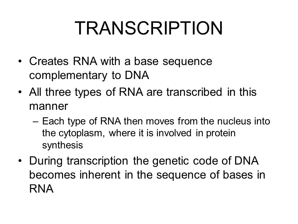TRANSCRIPTION Creates RNA with a base sequence complementary to DNA All three types of RNA are transcribed in this manner –Each type of RNA then moves from the nucleus into the cytoplasm, where it is involved in protein synthesis During transcription the genetic code of DNA becomes inherent in the sequence of bases in RNA