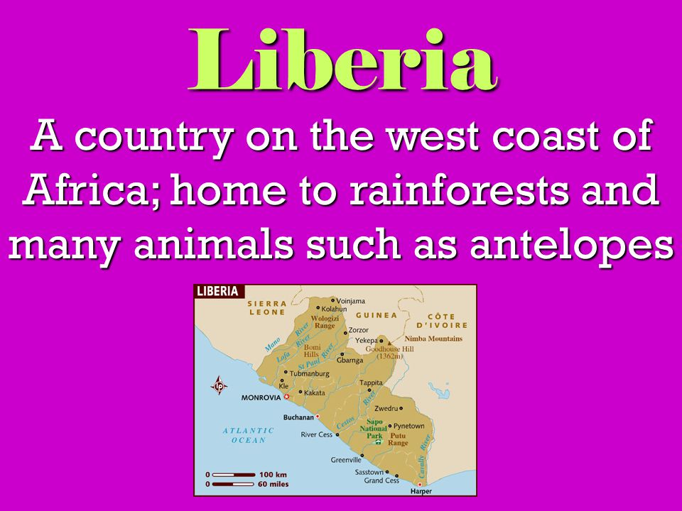 Liberia A country on the west coast of Africa; home to rainforests and many animals such as antelopes
