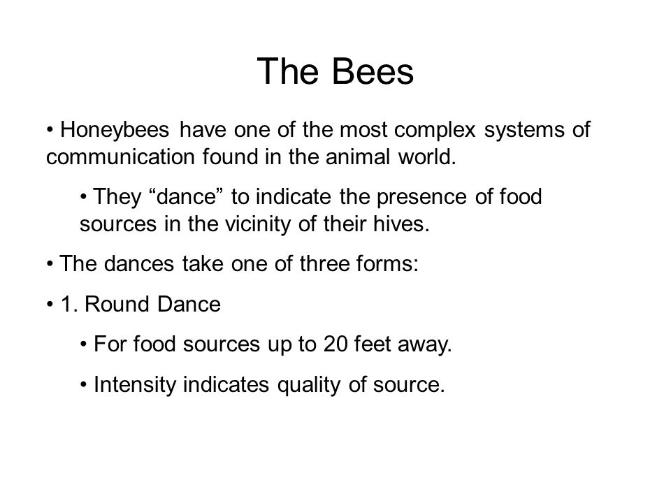 "The Bees Honeybees have one of the most complex systems of communication found in the animal world. They ""dance"" to indicate the presence of food sour"
