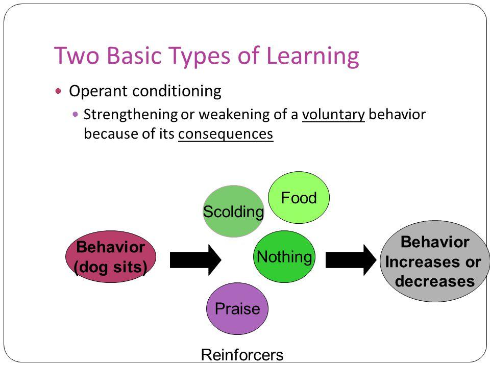 Five schools of behaviorism Watsonian behaviorism Neobehaviorism: Hull Intervening variables Cognitive Neobehaviorism: Tolman Cognitive map Latent learning Social Learning Theory: Bandura Reciprocal determinism Radical Behaviorism: Skinner