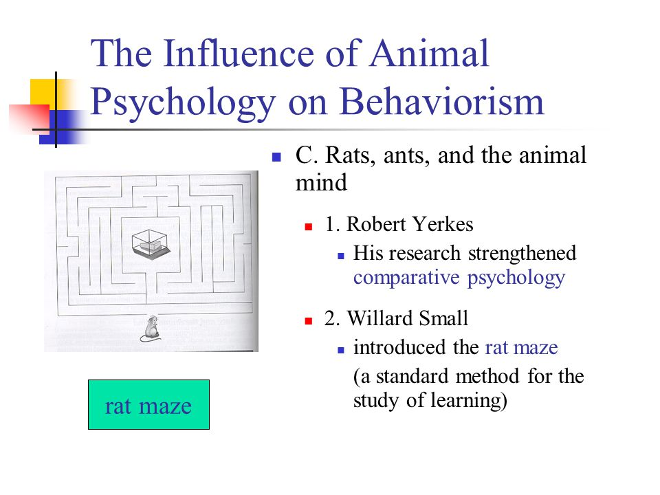 The Influence of Animal Psychology on Behaviorism C.