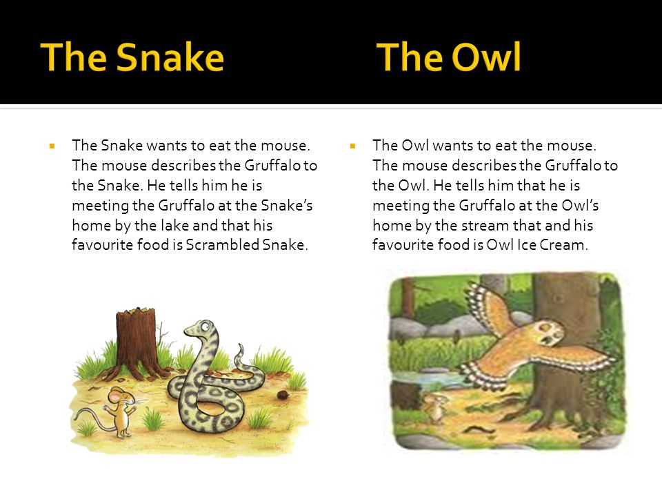  The Snake wants to eat the mouse. The mouse describes the Gruffalo to the Snake. He tells him he is meeting the Gruffalo at the Snake's home by the