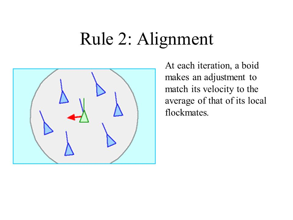 Rule 2: Alignment At each iteration, a boid makes an adjustment to match its velocity to the average of that of its local flockmates.