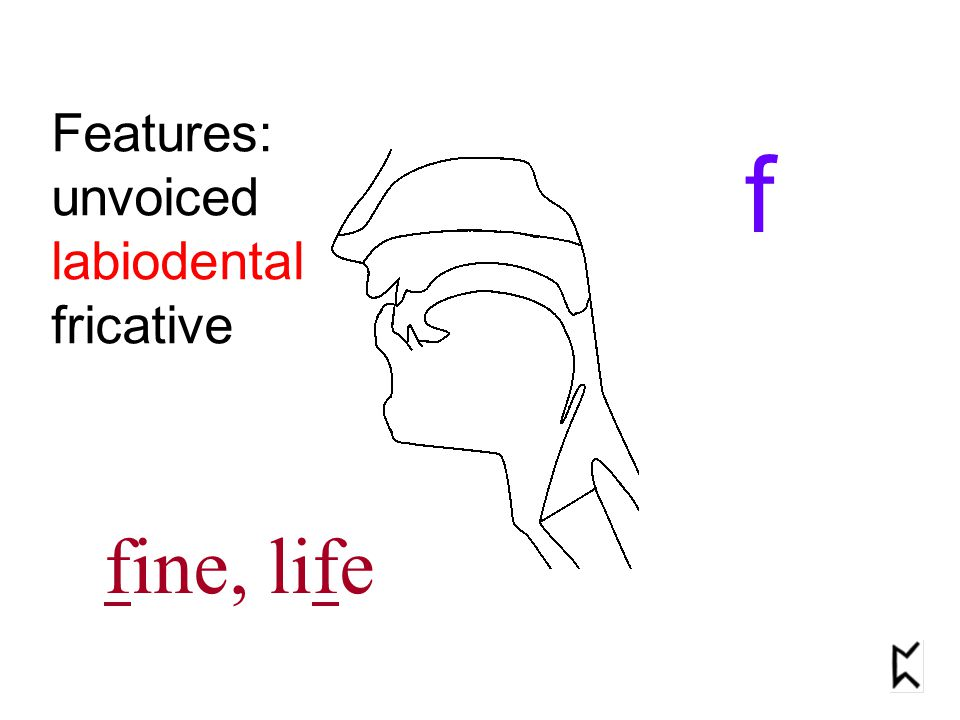Features: unvoiced labiodental fricative f fine, life