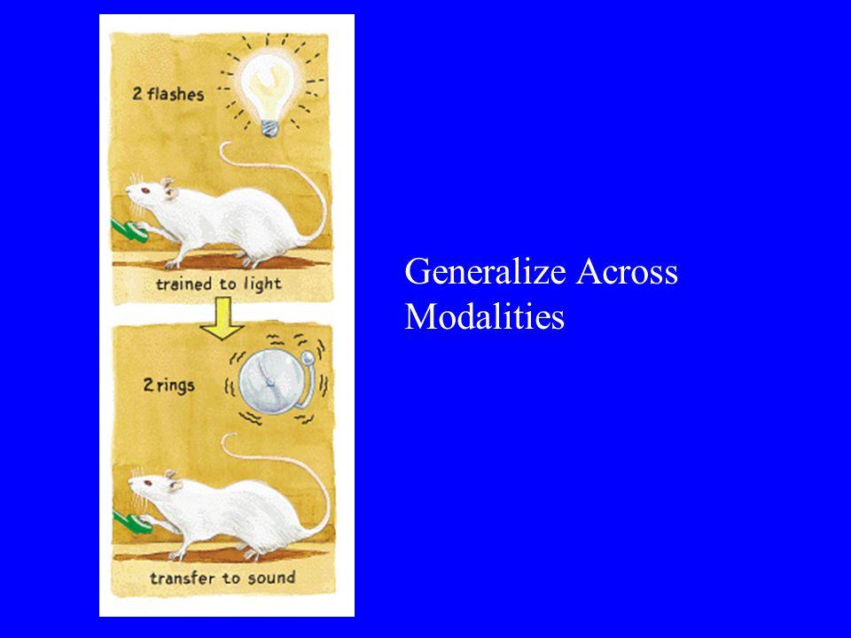 Generalize Across Modalities