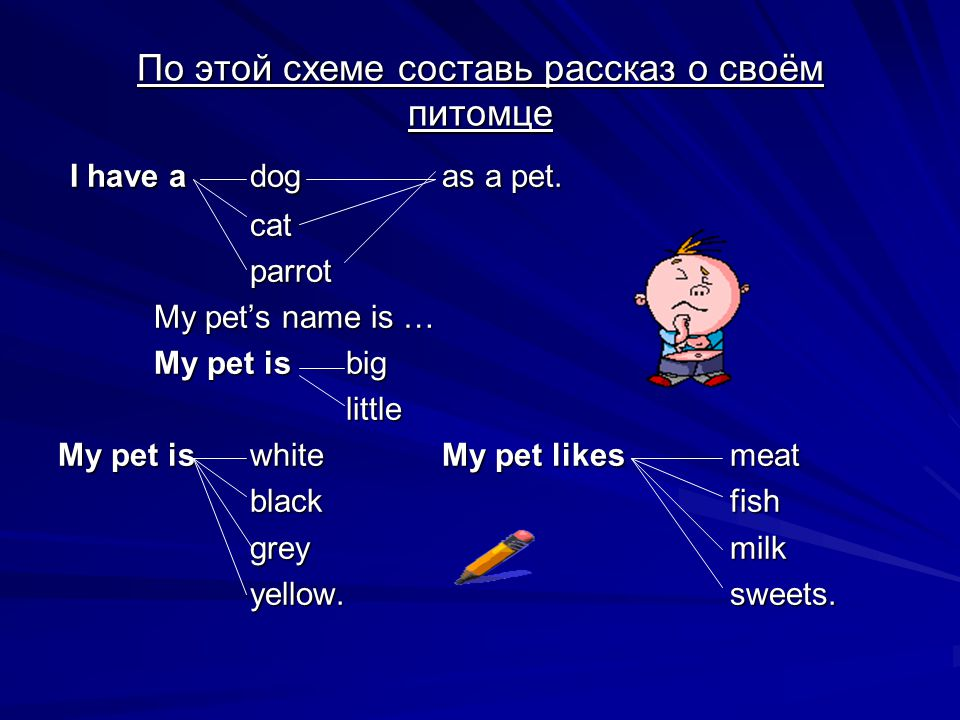 По этой схеме составь рассказ о своём питомце I have adogas a pet. I have adogas a pet.catparrot My pet's name is … My pet isbig little My pet iswhite